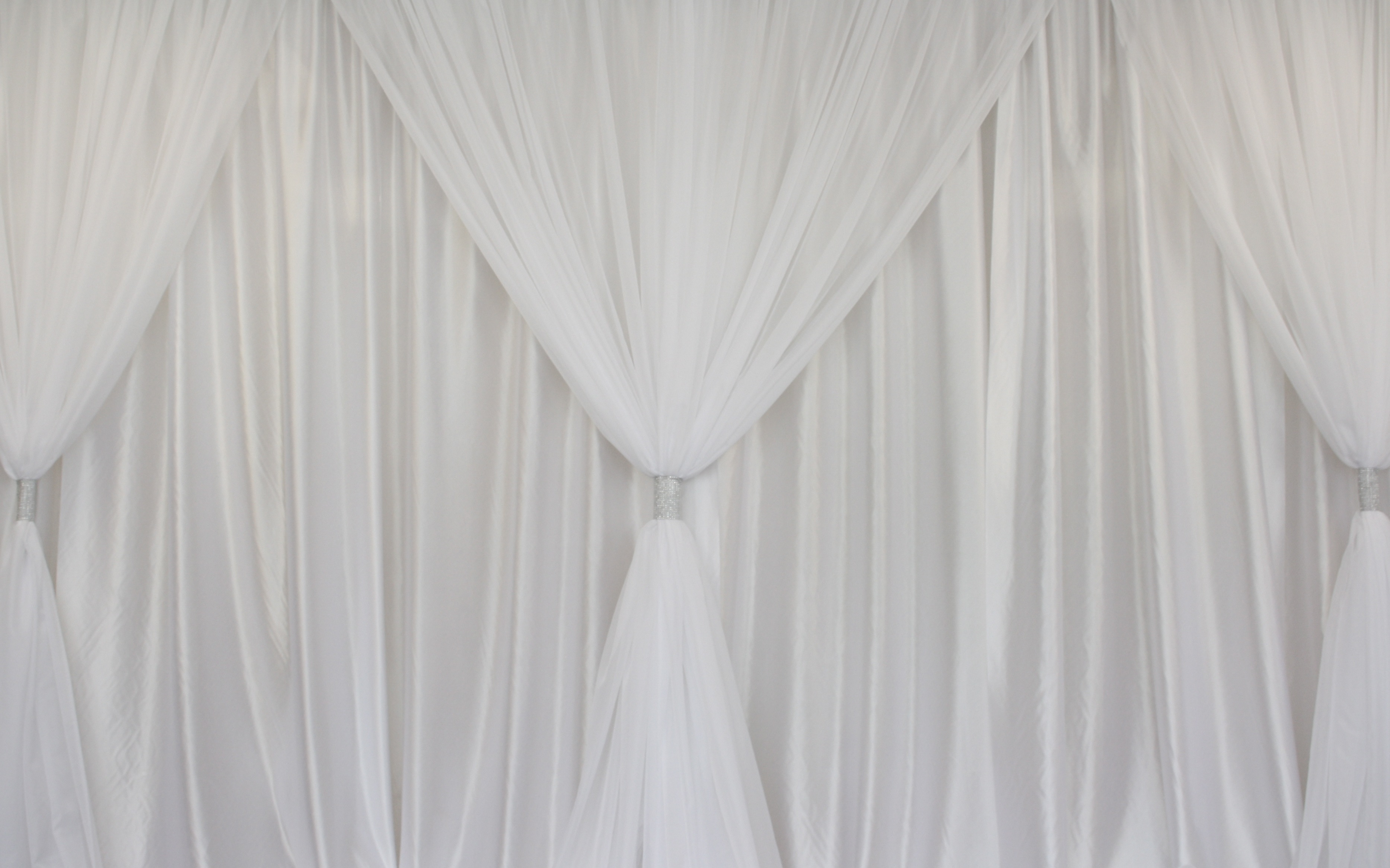 Sheer Zebra Print Curtains Picture On Curtain Wedding Backdrop