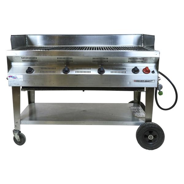 propane-grill-21x60